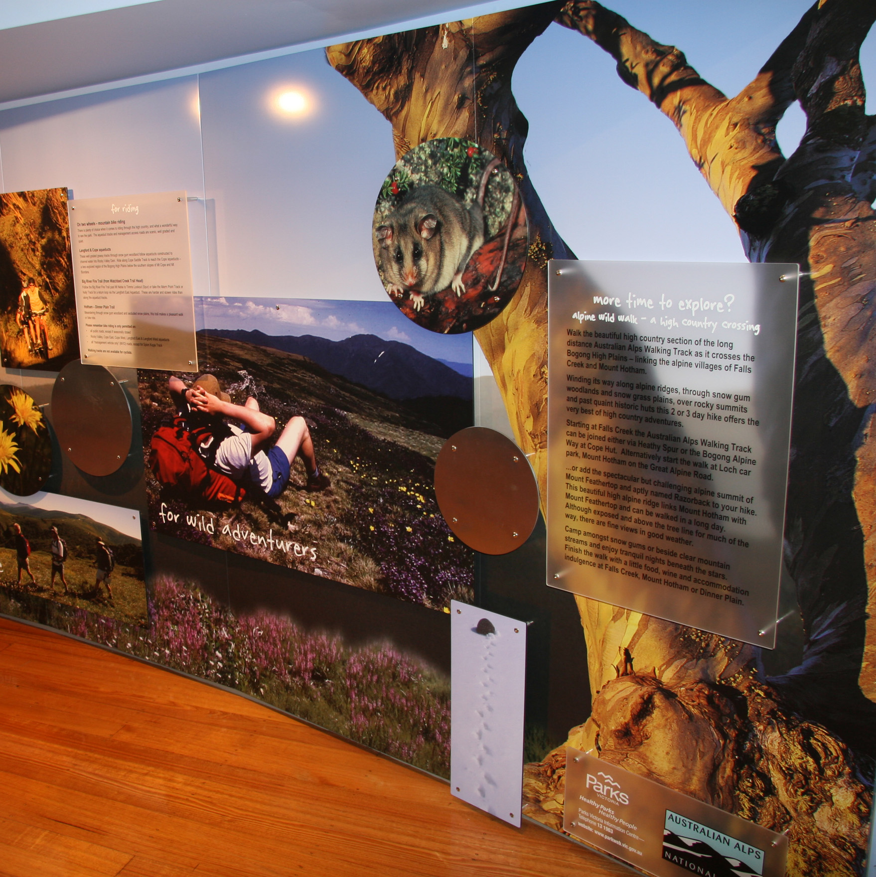Australian Alps Interpretive Interior