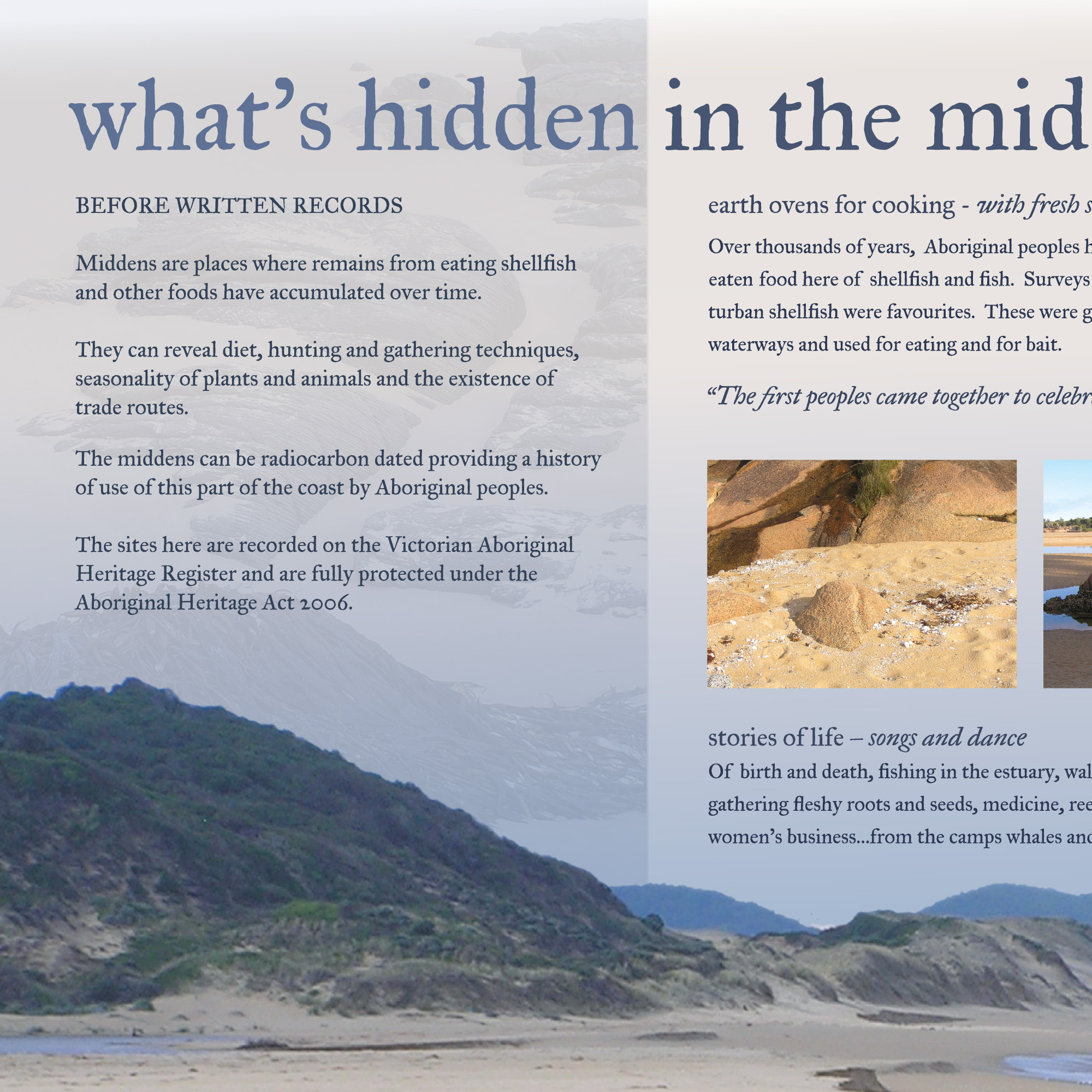 Hidden In The Midden