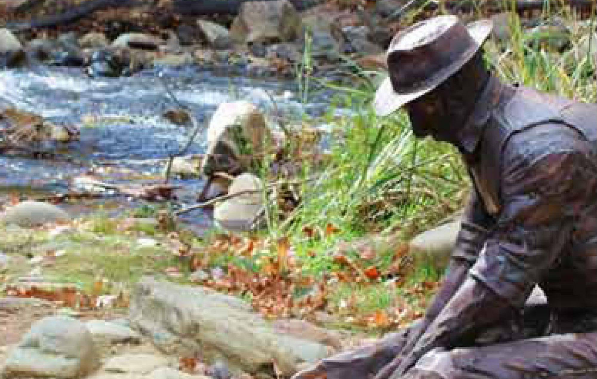 Statue Harrietville